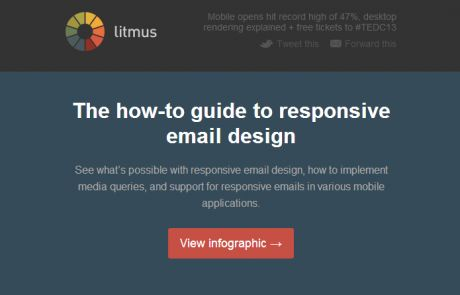Litmus Standout Email - responsive email design