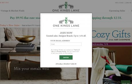One Kings Lane (Newsletter Signup Pop-up Example)