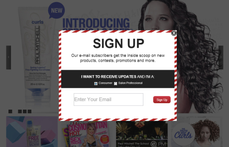 Paul Mitchell (Newsletter Signup Pop-up Example)